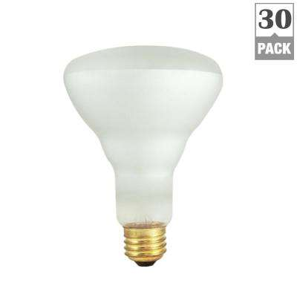 65-Watt BR30 Frost Dimmable Warm White Light Incandescent Light Bulb (30-Pack)