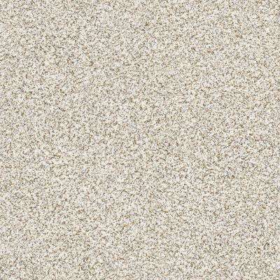 Carpet Sample - Madeline II - Color Feathered Owl Texture 8 in. x 8 in.