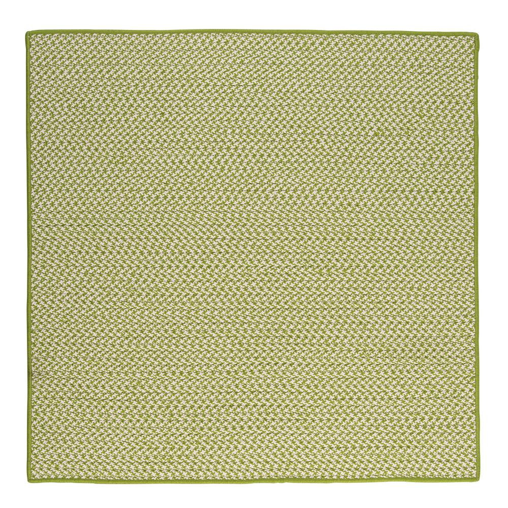 Sadie Lime (Green) 6 ft. x 6 ft. Indoor/Outdoor Braided A...
