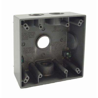 2-Gang Weatherproof Box with Four 3/4 in. Outlets