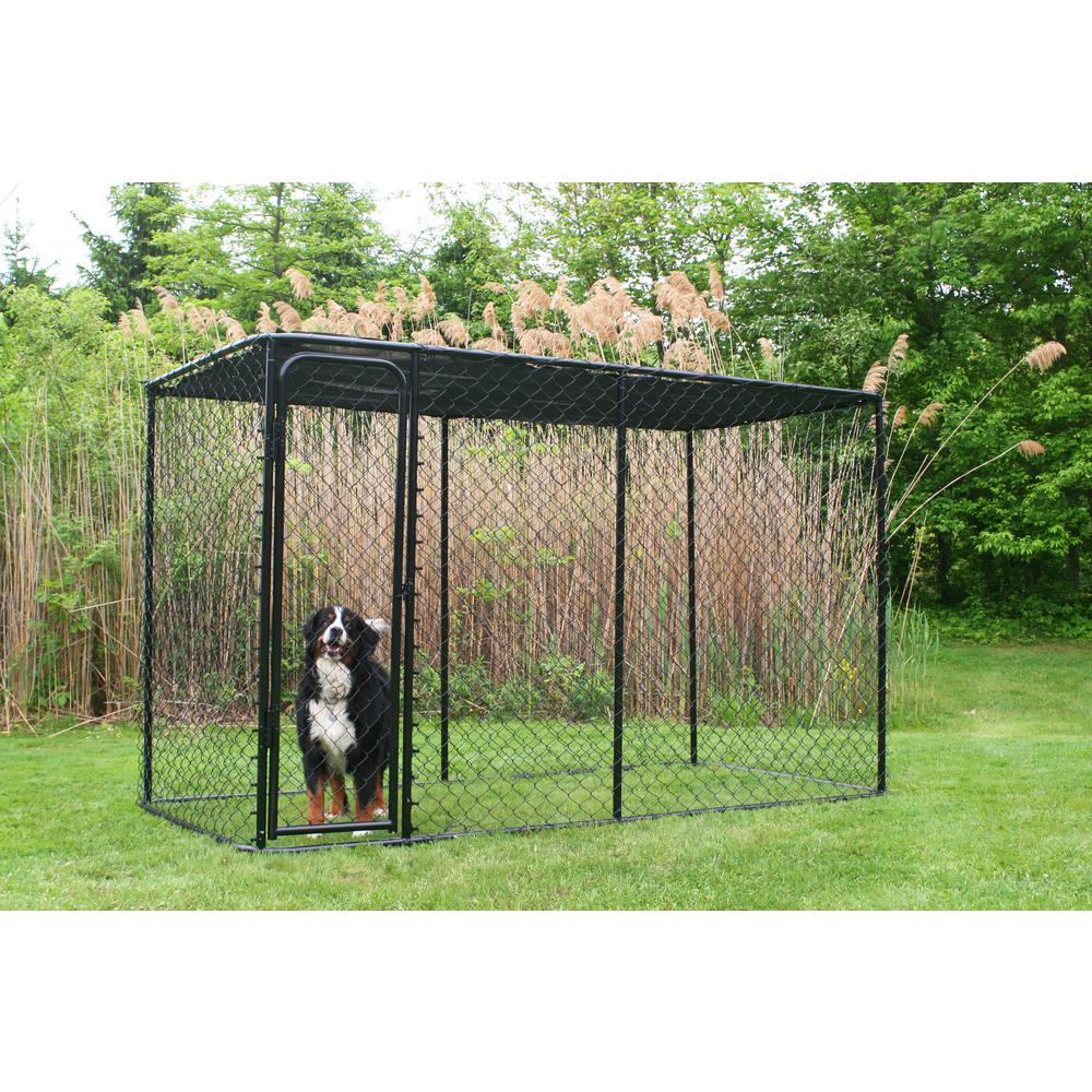 Kennelmaster 10 Ft X 5 Ft X 6 Ft Black Powder Coated Chain Link Boxed Kennel Kit K6510clbl C The Home Depot