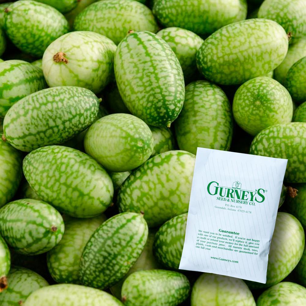 3 pcs Mouse melon vegetables Seeds