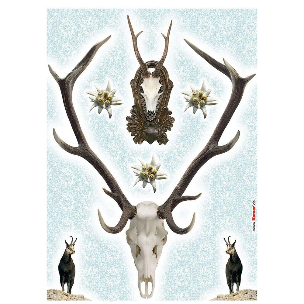 Freestyle 27 in. x 19 in. Holadiho Wall Decal