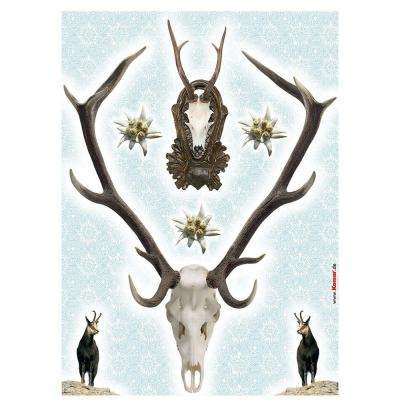 27 in. x 19 in. Holadiho Wall Decal