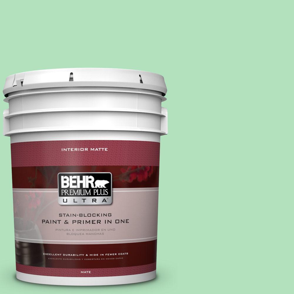 BEHR Premium Plus Ultra 5 gal. #P400-3 Folk Tale Matte Interior Paint