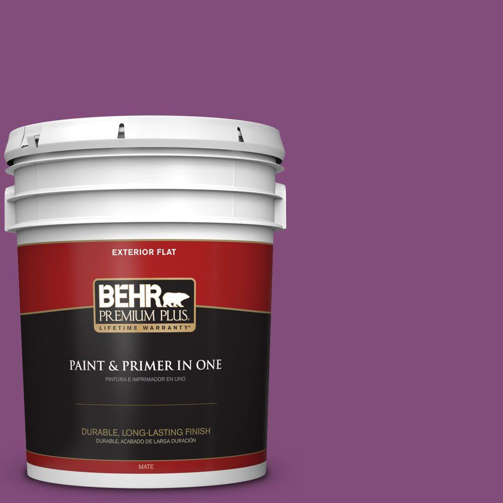 5-gal. #T15-12 Graphic Grape Flat Exterior Paint