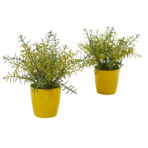 12 in. Rosemary Artificial Plant in Yellow Planter (Set of 2)
