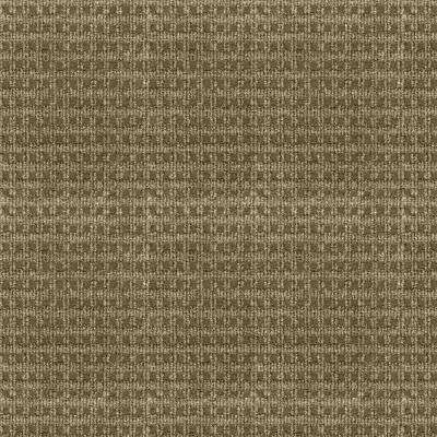 Serenity - Color Taupe Pattern Indoor/Outdoor 12 ft. Carpet