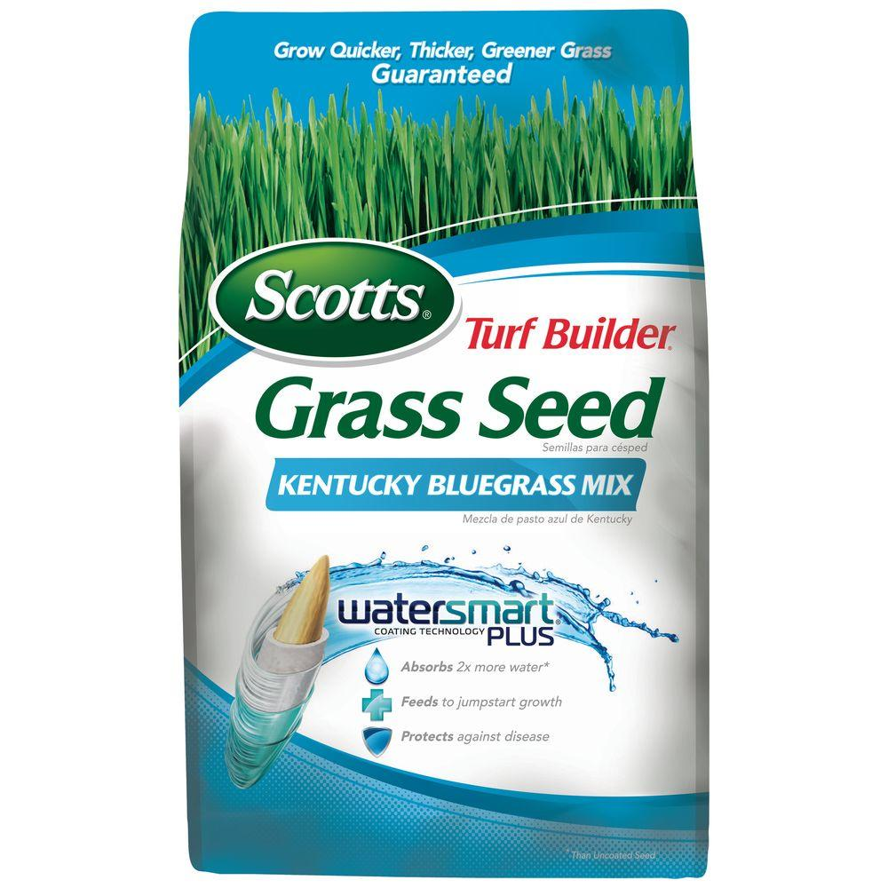 Scotts 3 lb. Turf Builder Kentucky Bluegrass Mix Seed