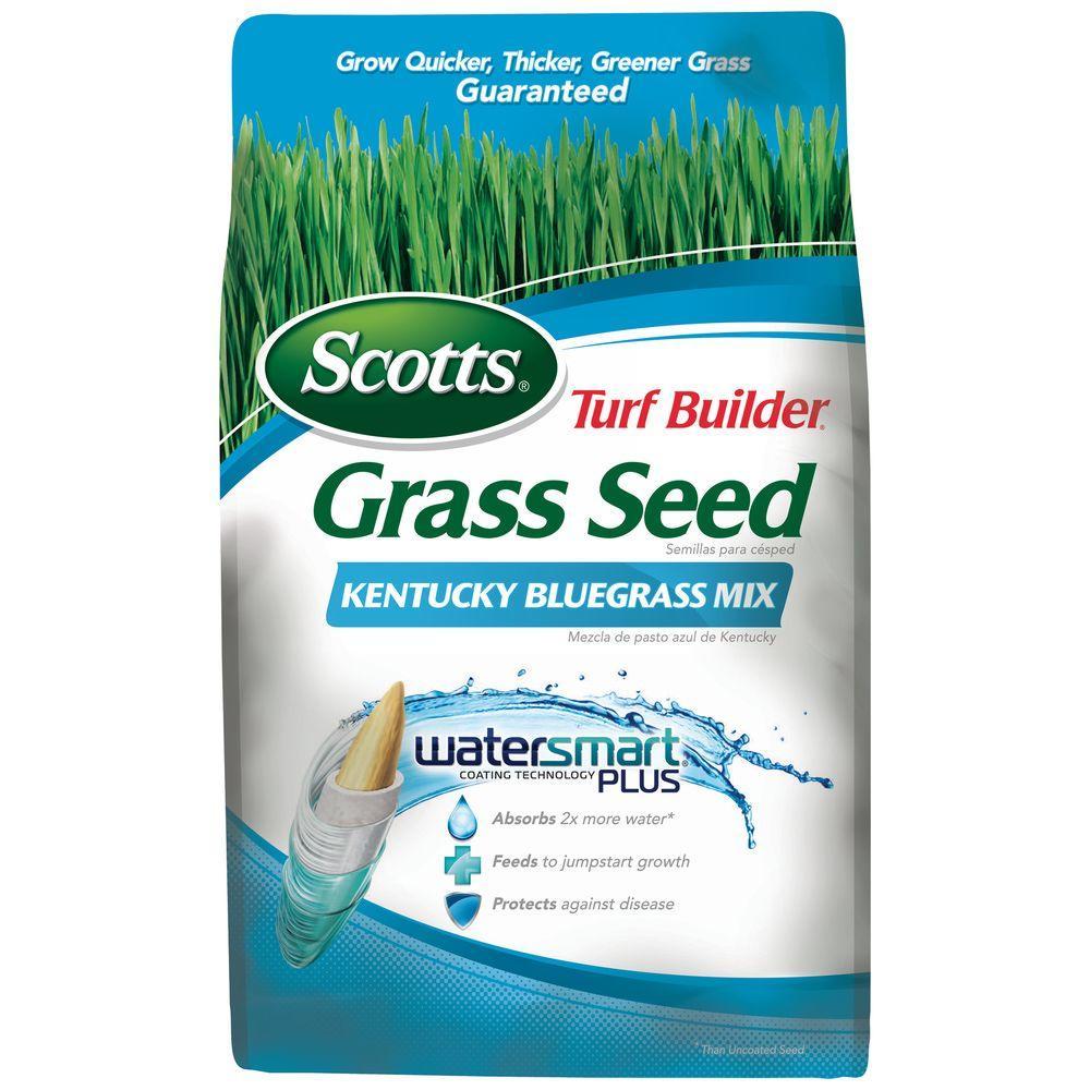 3 lb. Turf Builder Kentucky Bluegrass Mix Seed