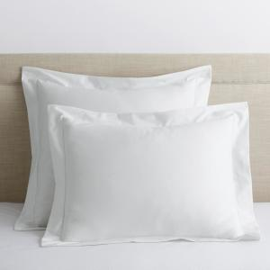 Company Cotton White Solid 300-Thread Count Wrinkle-Free Sateen Euro Sham