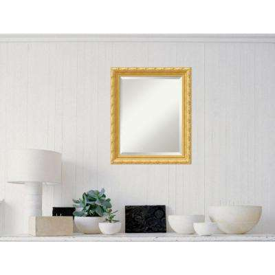 Versailles Gold Wood 20 in. W x 24 in. H Traditional Framed Mirror