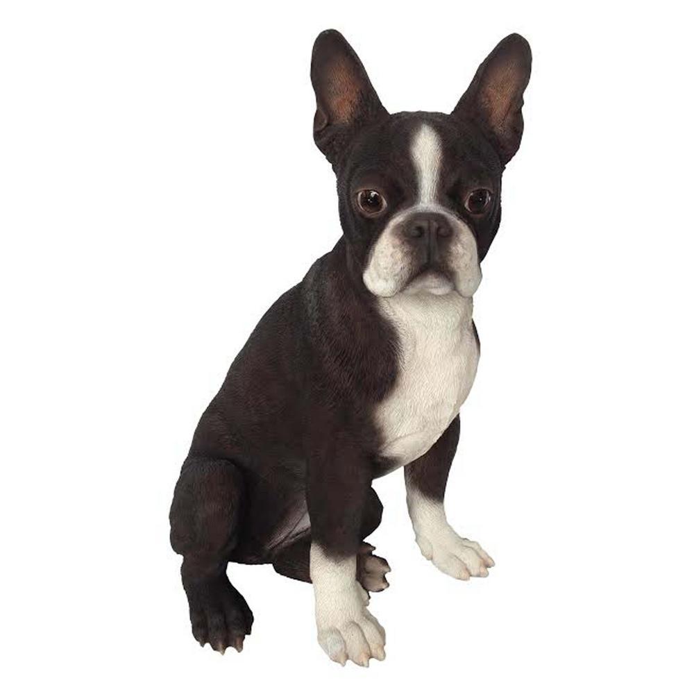 Boston Terrier Statue