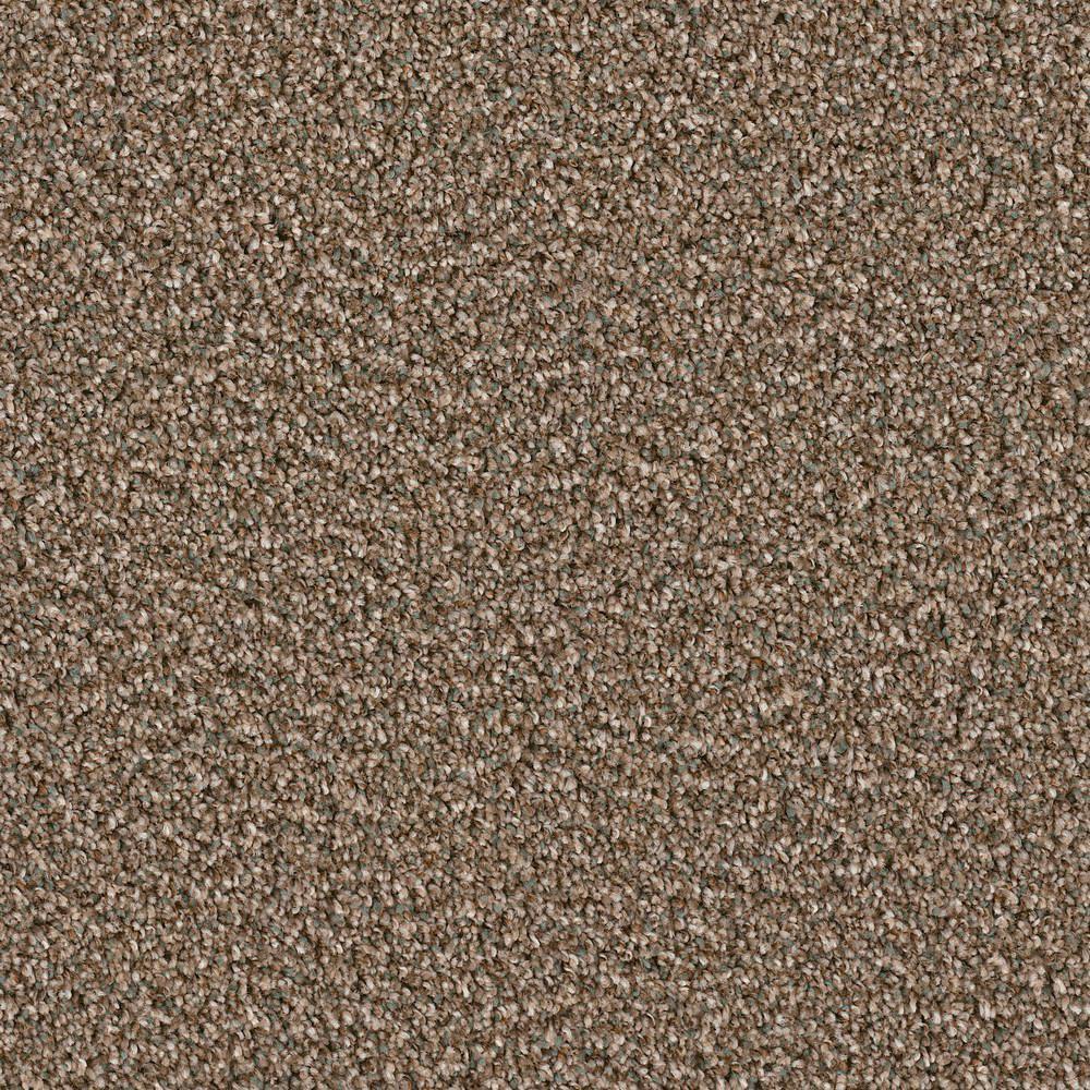 Home Decorators Collection Carpet Sample Palace I