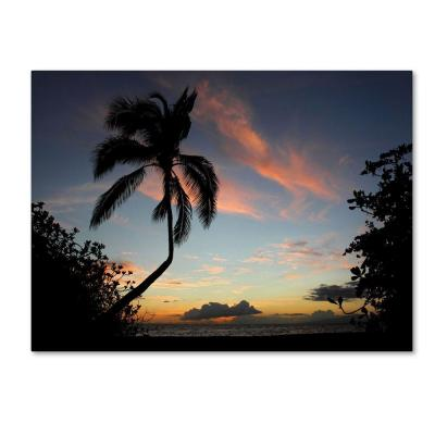 30 in. x 47 in. Tropical Sunset Canvas Art