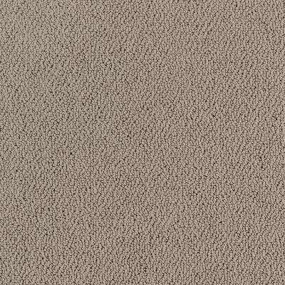 Lifeproof Lower Treasure Color Pewter Pattern 12 Ft Carpet 0547d 23 12 The Home Depot