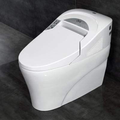 Smart 1-Piece 1.28 GPF Single Flush Elongated Toilet and Bidet with Seat in White