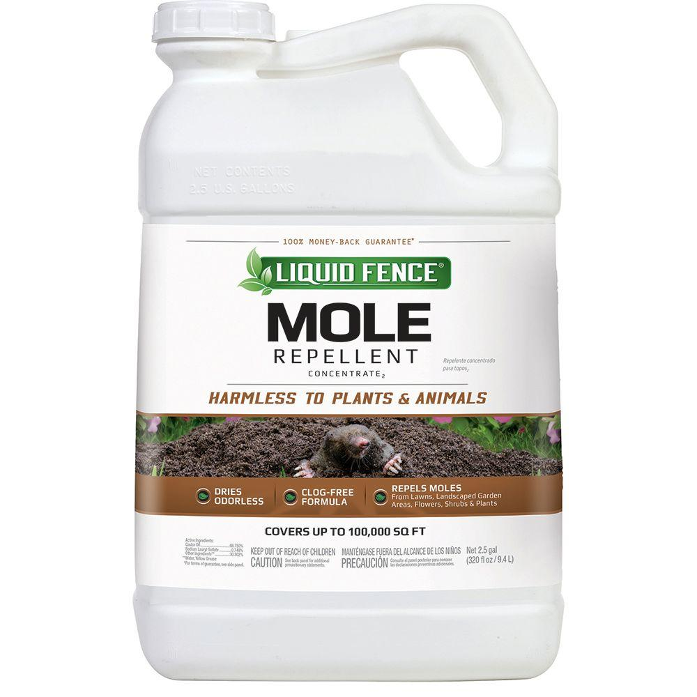 2.5 gal. Concentrate Mole Repellent
