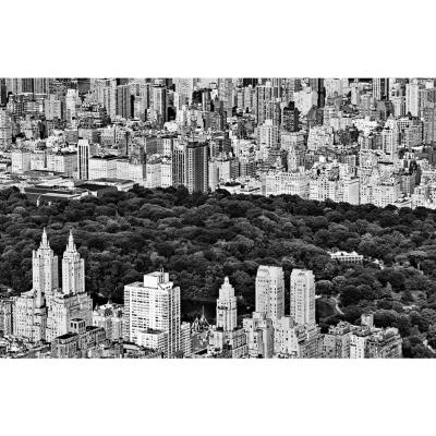 """48 in. x 72 in. """"NYC Central Park"""" by Daniel Stein Wall Art"""