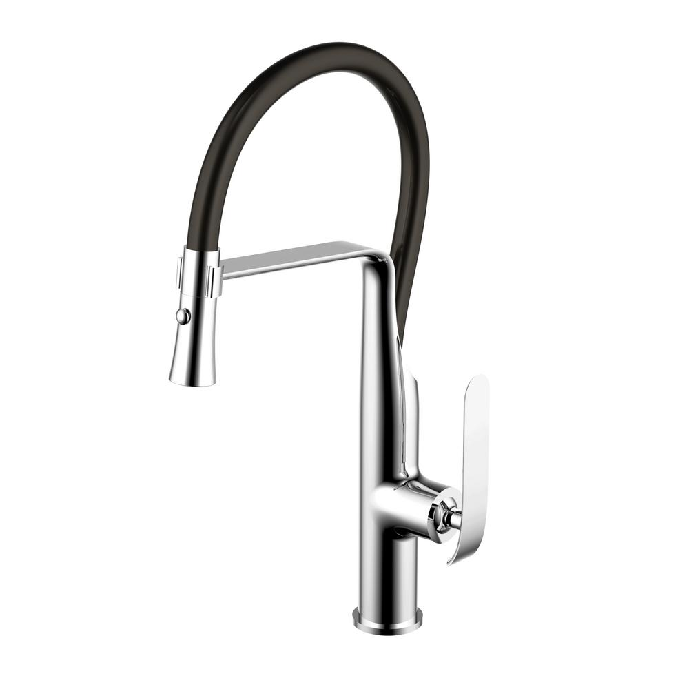 Water Creation Single-Handle Pull-Down Sprayer Kitchen Faucet in ...