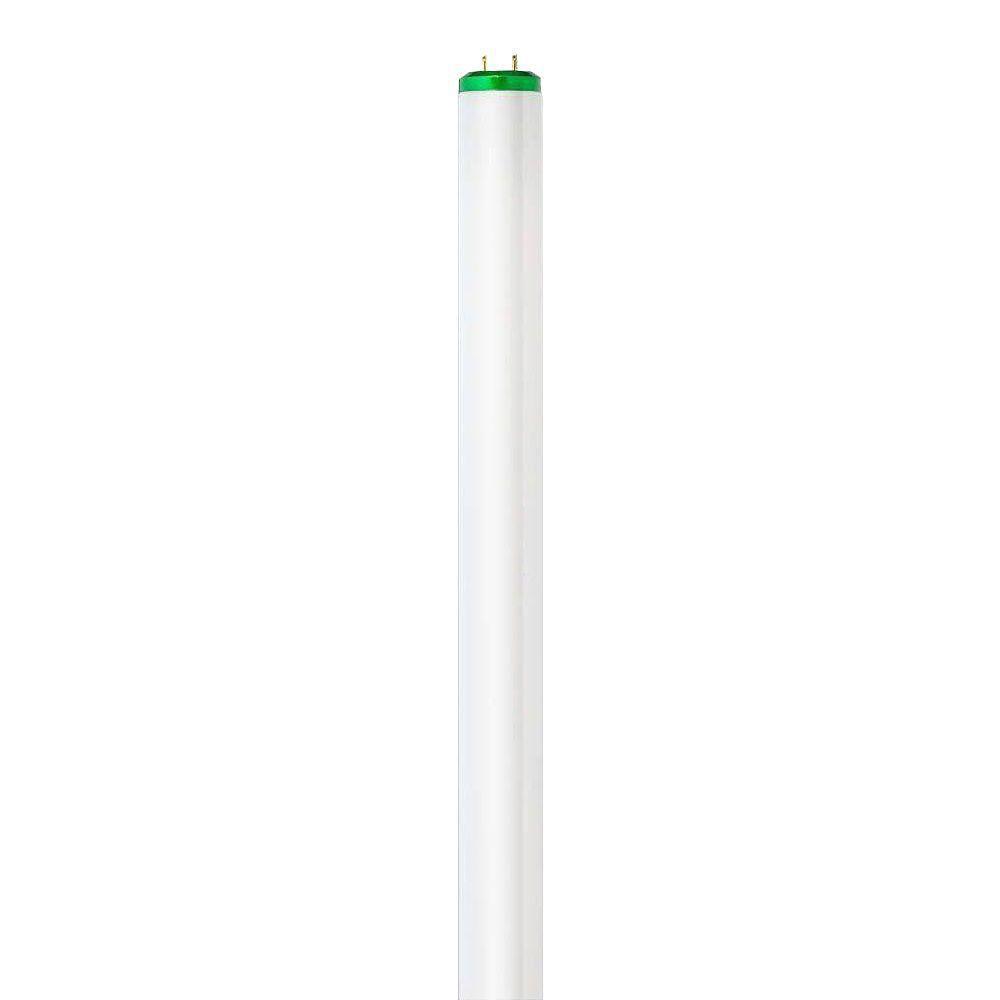 Philips 4 ft. T8 32-Watt Neutral (3500K) Alto Linear Fluorescent Light Bulb (360-Pallet)