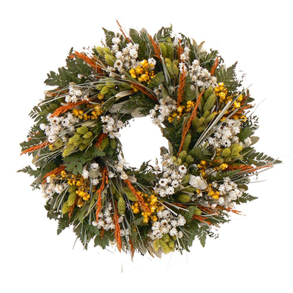 The Christmas Tree Company Wild Daisy Stroll 18 in. Dried Floral Wreath