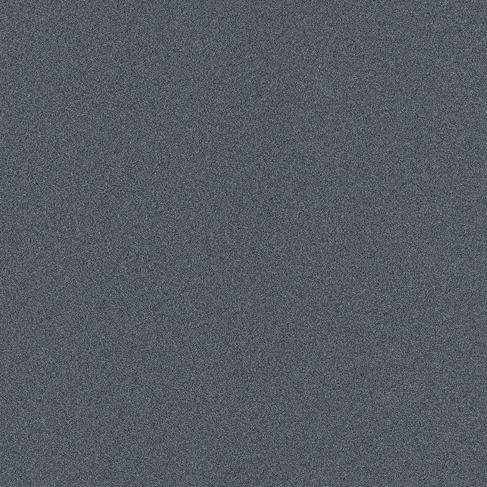 TrafficMASTER Arcadian - Color Smoke Texture Indoor/Outdoor 12 ft. Carpet, Grays