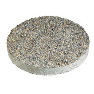 16 in. x 16 in. Round Exposed Aggregate Gray Concrete Step Stone