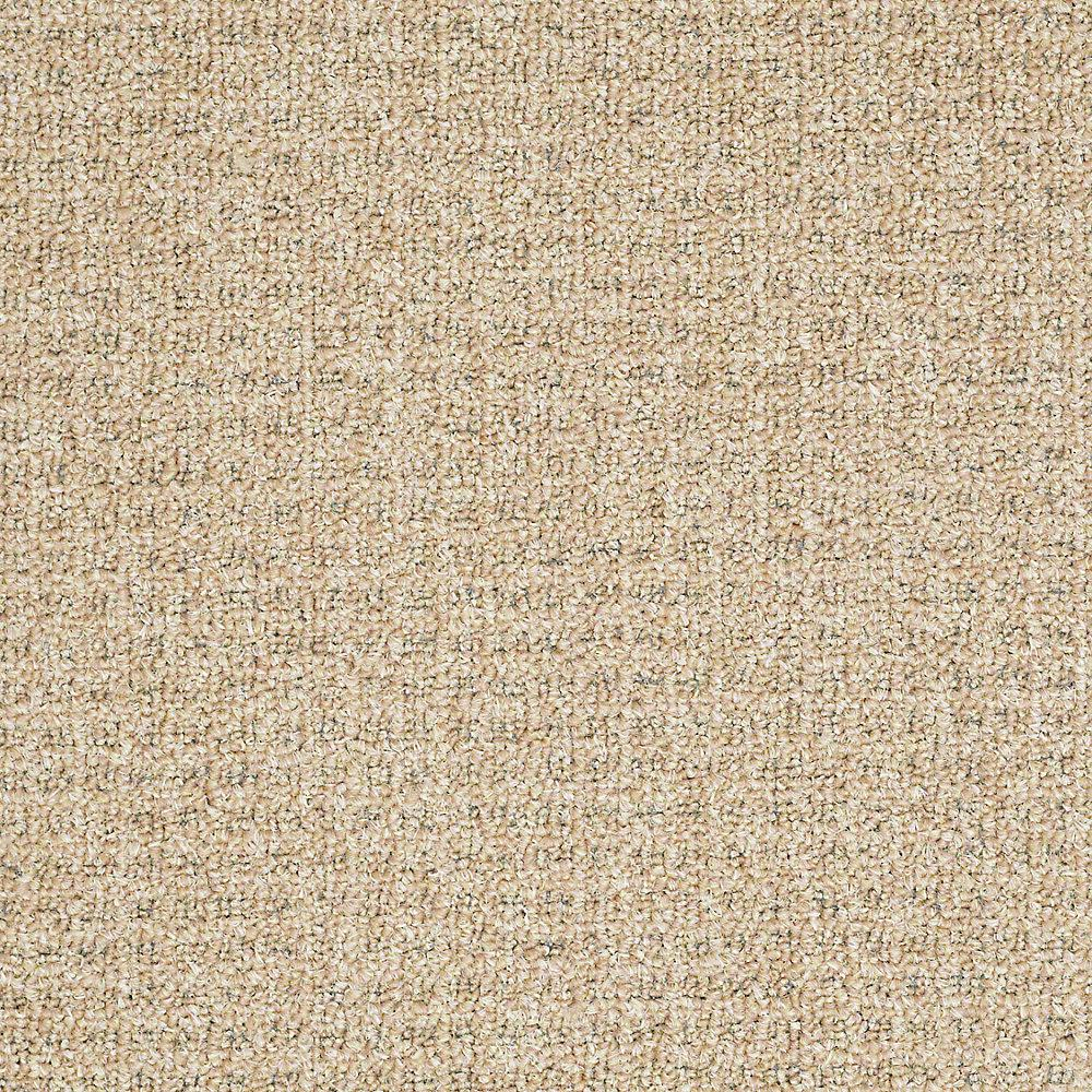 Trafficmaster Commercial Carpet Sample - Burana - In Color