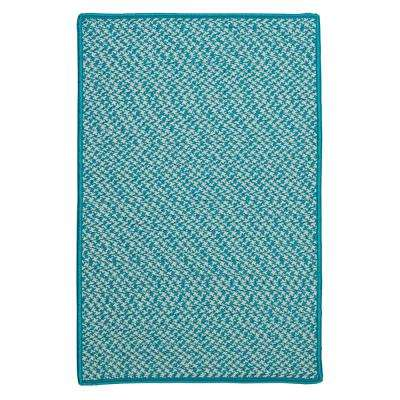 Sadie Turquoise 2 ft. x 4 ft. Indoor/Outdoor Braided Area Rug