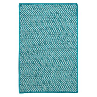 Sadie Turquoise 5 ft. x 8 ft. Indoor/Outdoor Braided Area Rug
