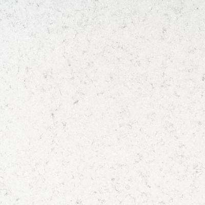 4 in. x 4 in. Quartz Countertop Sample in Carrara Iris