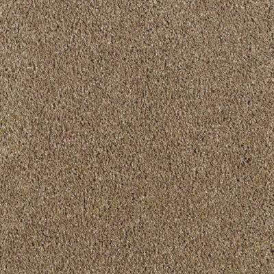 Carpet Sample - Pagliuca I - Color Weathered Wood Texture 8 in. x 8 in.