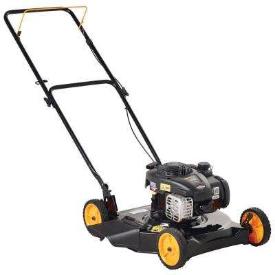 20 in. Push Walk-Behind Gas Mower