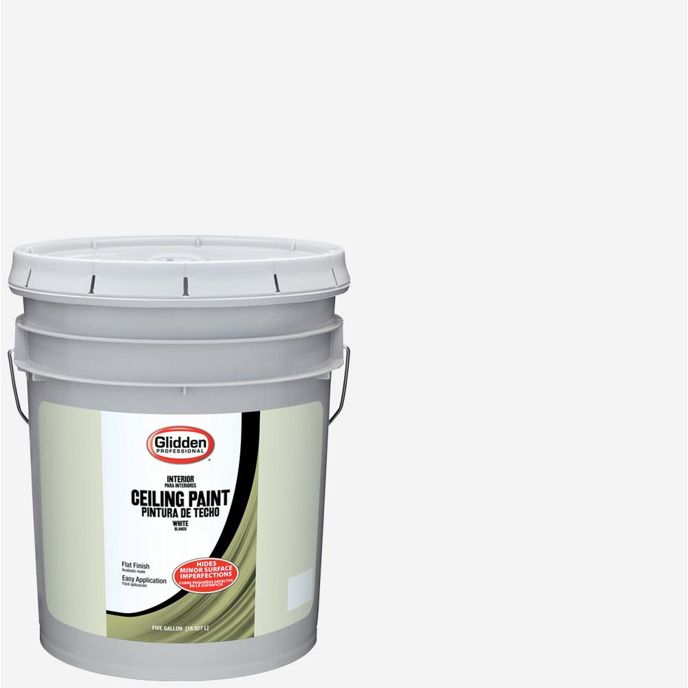 Glidden Ceiling 5 gal. White Flat Interior Ceiling Paint-GPL-0000-05 ...