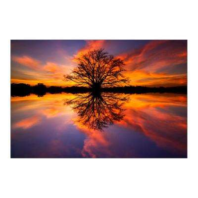 "47 in. x 32 in. ""Balance"" Tempered Glass Wall Art"