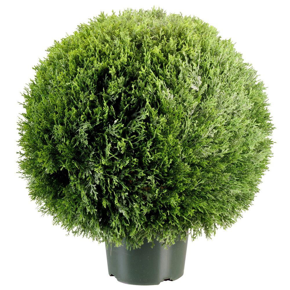 National Tree 24 in. Cedar Pine Artificial Topiary in 9 i...