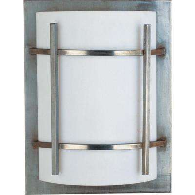Luna 1-Light Brushed Metal Outdoor Wall Lantern Sconce