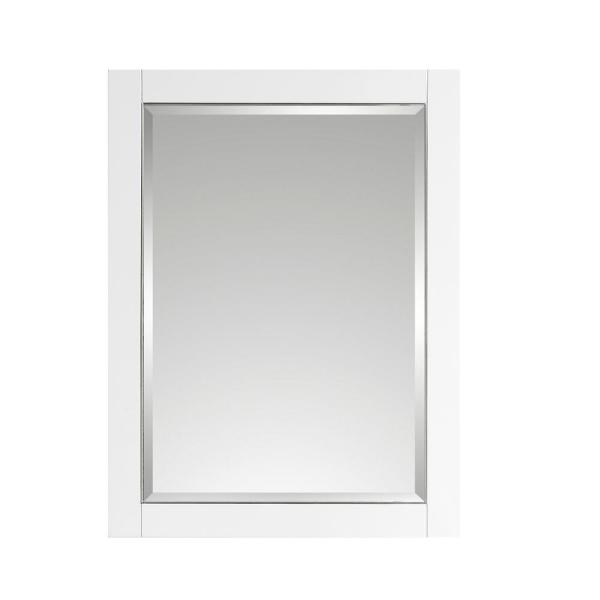 Allie 22 in. W x 28 in. H x 6 in. D Surface Mount Medicine Cabinet in White with Silver Trim