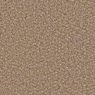 Carpet Sample - Palace II - Color Cavalier Texture 8 in. x 8 in.