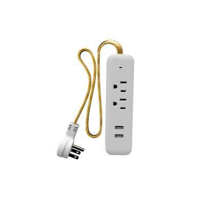 2-Outlet 2-USB Surge Protector Strip with Gold Braided Cable