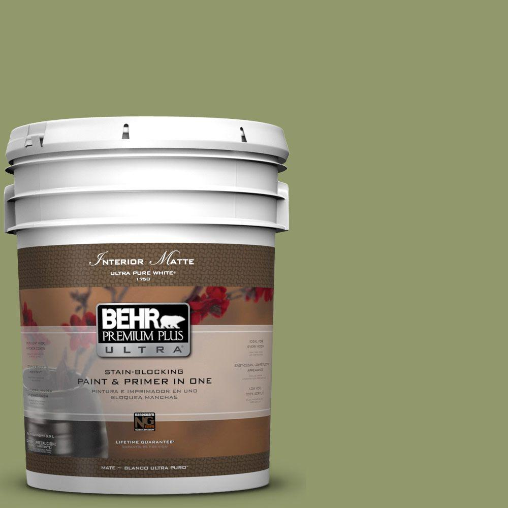 5 gal. #HDC-SP14-2 Exotic Palm Matte Interior Paint