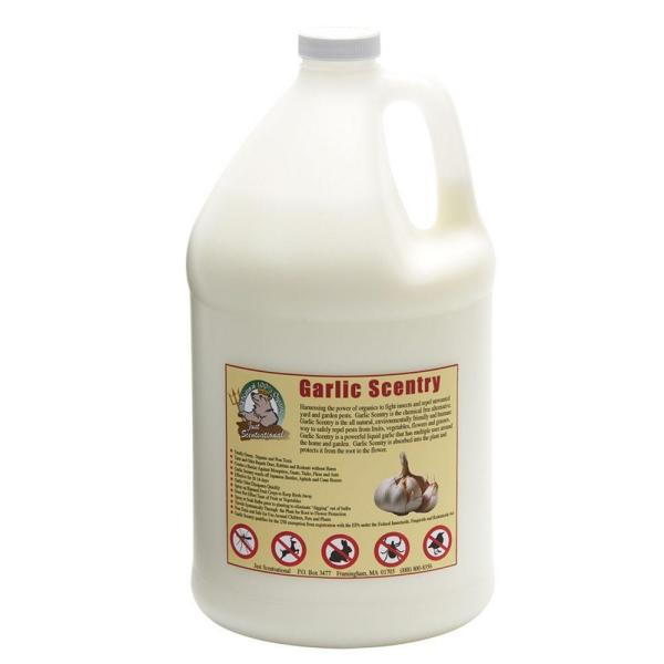 128 oz. Garlic Scentry Concentrate