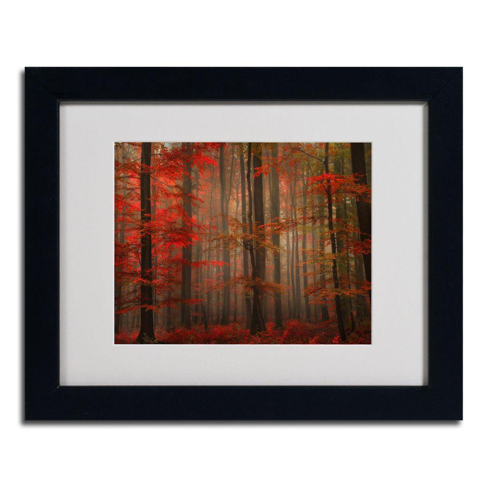 null 16 in. x 20 in. Enchanting Red Black Framed Matted Art-DISCONTINUED