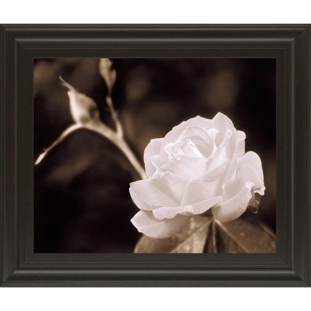 Classy Art 22 in. x 26 in. ''Rose Sophisication'' by Mark