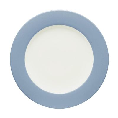 Colorwave 11 in. Ice Rim Dinner Plate