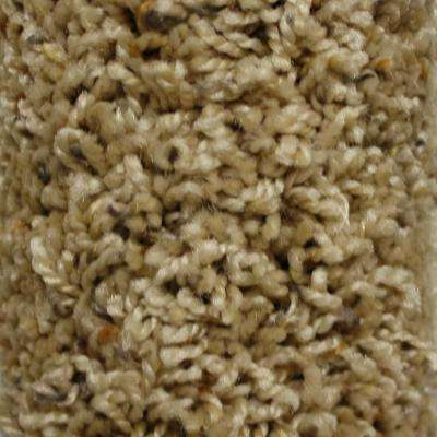 Carpet Sample - Shelby I - Color Personal Touch Twist 8 in. x 8 in.