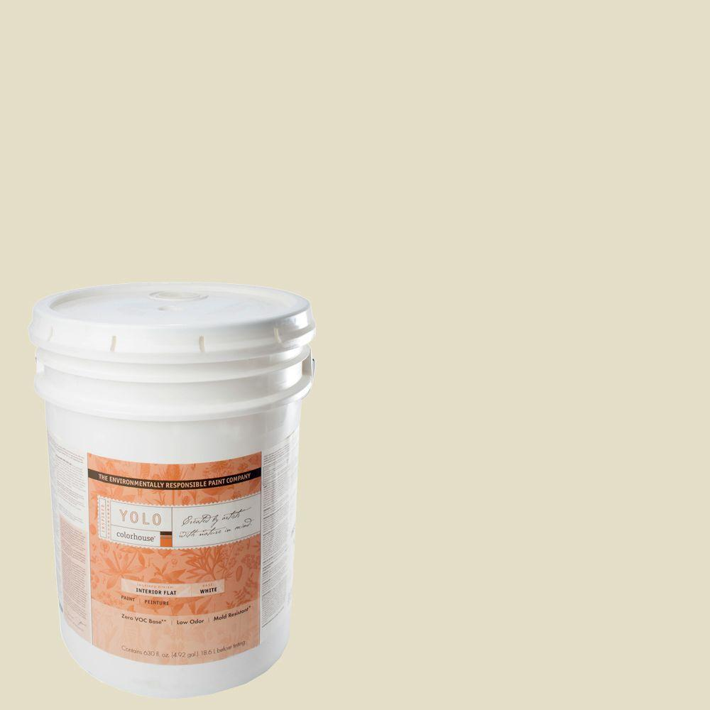 YOLO Colorhouse 5-gal. Air .03 Flat Interior Paint-DISCONTINUED