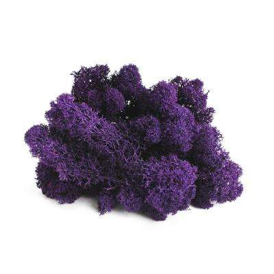 Artificial plants flowers home accents the home depot shop succulents reindeer moss purple mightylinksfo