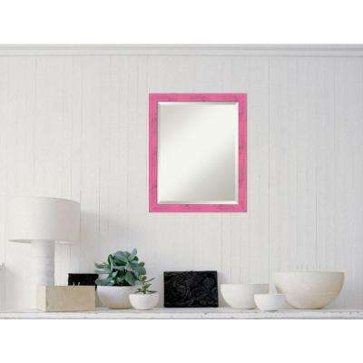 Petticoat Pink Rustic Wood 18 in. W x 22 in. H Distressed Framed Mirror